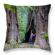 Bill Looking Up At The Sequioas Trees Throw Pillow