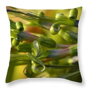Billbergia Nutans Throw Pillow