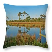 Billiys Back Bay Throw Pillow