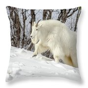 Billy Goat On The Move Throw Pillow
