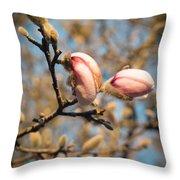 Biltmore Cherry Blossom Throw Pillow