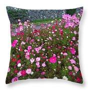 Biltmore Garden Throw Pillow