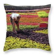 Biltmore Gardener Throw Pillow