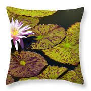Biltmore Lily  Throw Pillow