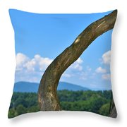 Biltmore Terrace  Throw Pillow