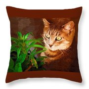 Bink Throw Pillow
