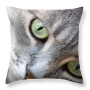 Binkster Throw Pillow
