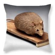 Bioengineered Obese Mouse, 1998 Throw Pillow