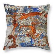 Biography Of A Wall 17 Throw Pillow
