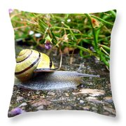 Biological Drive Cleaner Throw Pillow