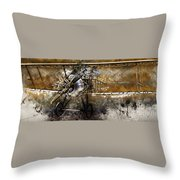 Biplane Throw Pillow