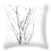 Birch Abstraction Study Throw Pillow