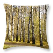 Birch Alley In Autumn Throw Pillow