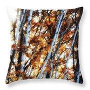 Birch And Oak And Sun Throw Pillow