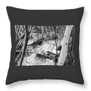 Birch And Stream Throw Pillow