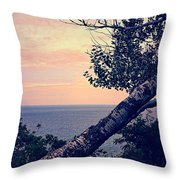 Birch At The Overlook Throw Pillow