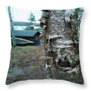 Birch Bark 3 Throw Pillow