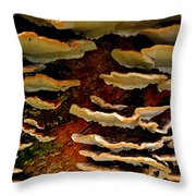 Birch Bracket Fungus Throw Pillow