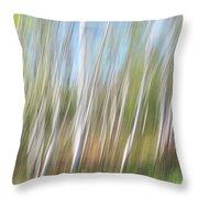 Birch Dream #3 Throw Pillow