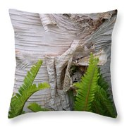 Birch Fern Throw Pillow