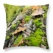 Birch Log Throw Pillow