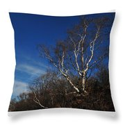 Birch On A Cliff  Throw Pillow
