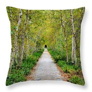 Birch Pathway Perspective Throw Pillow