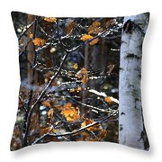 Birch Tree In Winter Throw Pillow