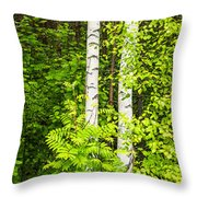 Birch Tree Panorama Throw Pillow