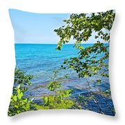 Birch Trees Above Lake Superior Off North Country Trail In Pictured Rocks National Lakeshore-mi Throw Pillow