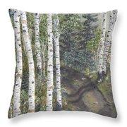 Birch Trees Along Kennys Road  2 Throw Pillow