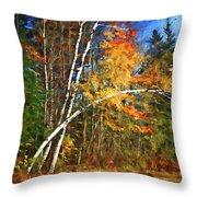 Birch Trees - Autumn Throw Pillow