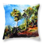 Birch Trees At Swallow Falls Throw Pillow