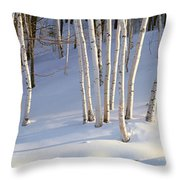 Birch Trees In The Snow, South Throw Pillow