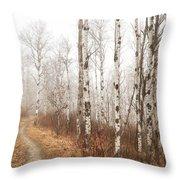 Birch Walk Throw Pillow
