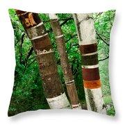 Birch Wood Layers Throw Pillow