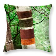Birch Wood Tree  Throw Pillow