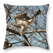 Birched Cooper 1 Throw Pillow