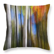 Birches In Autumn Forest Throw Pillow