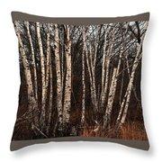 Birches In The Rain Throw Pillow