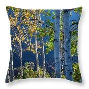 Birches On Lake Shore Throw Pillow