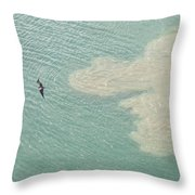 Bird And Churning Sand Throw Pillow