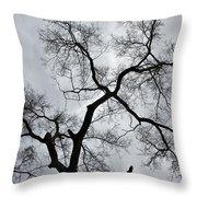 Bird And Tree Throw Pillow