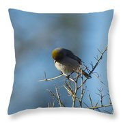 Bird At Pontatoc Throw Pillow