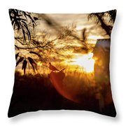 Bird At Sunset Color Throw Pillow