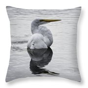 Bird Bath 4619 Throw Pillow