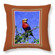 Bird Beauty - No 7 P B With Alternative Decorative Ornate Printed Frame. Throw Pillow
