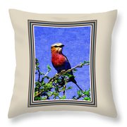 Bird Beauty - No 7 P B With Decorative Ornate Printed Frame. Throw Pillow
