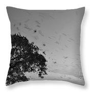 Bird En Route Throw Pillow