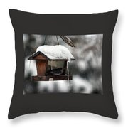 Bird House Blues Throw Pillow